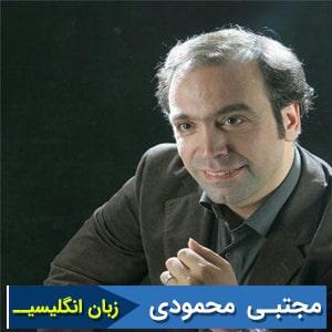 مجتبی محمودی